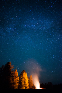 Stars in sky, camp fire by forestの写真素材 [FYI03674648]