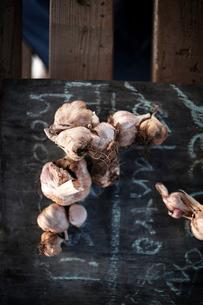 Garlic bulbs on blackboardの写真素材 [FYI03675609]