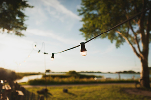 Vintage light bulbs hanging outdoors on sunny dayの写真素材 [FYI03680736]