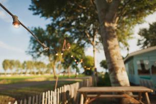 Vintage light bulbs hanging over fenceの写真素材 [FYI03680737]