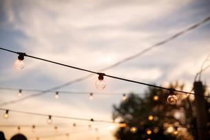 Rows of light bulbs against overcast skyの写真素材 [FYI03681967]