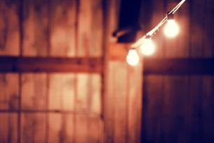 Light bulbs in barnの写真素材 [FYI03682880]