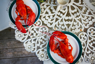 Overhead view of crayfishes in plates on tableの写真素材 [FYI03683878]