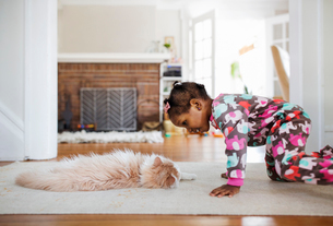 Side view of curious girl looking at cat lying on rug in living roomの写真素材 [FYI03684023]