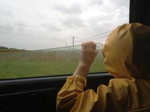 Rear view of boy looking through car window during rainy seasonの写真素材 [FYI03684352]