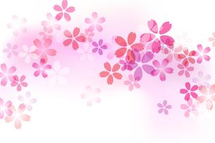 桜模様 背景素材のイラスト素材 [FYI03684804]