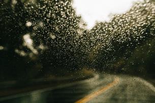 Country road during rainy seasonの写真素材 [FYI03686377]