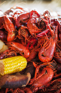 Close-up of boiled crayfishes with corn and potatoesの写真素材 [FYI03688682]