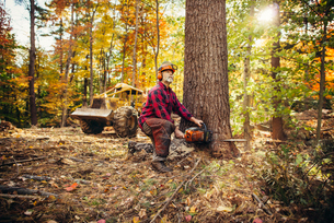 Male lumberjack cutting tree trunk with chainsaw in forestの写真素材 [FYI03688710]
