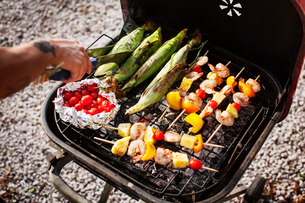 Overhead view of man barbecuing in yardの写真素材 [FYI03690089]