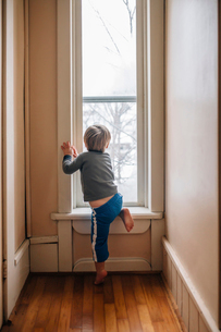 Rear view of curious boy looking through windowの写真素材 [FYI03692241]