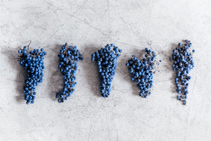 Bunches of grapes arranged on textured surfaceの写真素材 [FYI03693654]