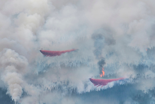 High angle view of seaplane discharging water on forest fireの写真素材 [FYI03695488]