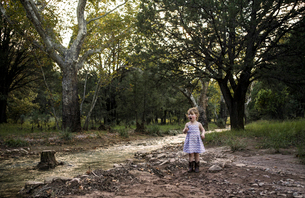 Curious girl standing by stream against trees at forestの写真素材 [FYI03695779]