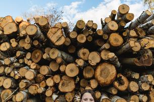 Portrait of girl standing against wood logsの写真素材 [FYI03696819]