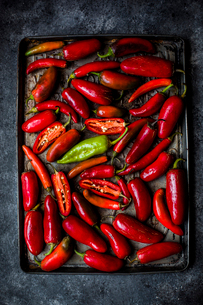 Overhead view of chili peppers in tray on slateの写真素材 [FYI03699381]