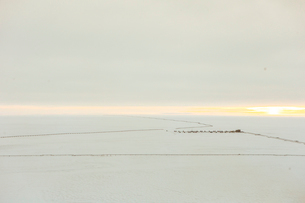 View of metallic pipeline snow covered field against skyの写真素材 [FYI03699637]