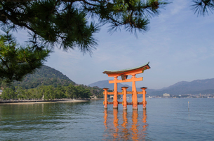 Torii gate at Itsukushima Shrine against skyの写真素材 [FYI03699879]