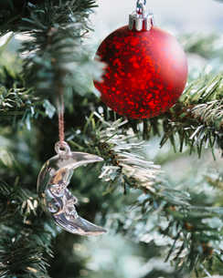 Close-up of Christmas ornament and decoration hanging on pine treeの写真素材 [FYI03703692]