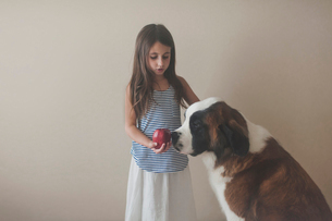 Girl holding apple while standing with Saint Bernard against wall at homeの写真素材 [FYI03705917]