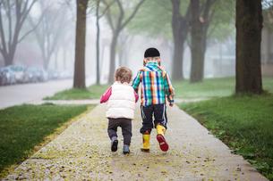 Rear view of siblings walking on walkway amidst field during foggy weatherの写真素材 [FYI03706061]