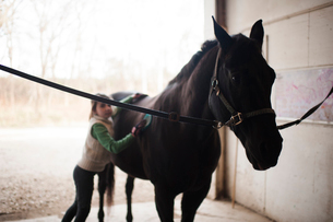 Girl standing by horse in stableの写真素材 [FYI03707742]