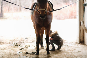 Girl by horse in stableの写真素材 [FYI03707749]