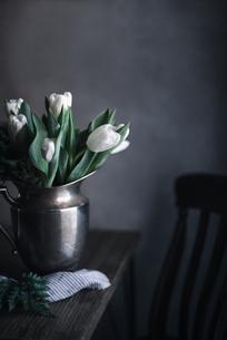 White tulips in metallic vase on tableの写真素材 [FYI03708913]