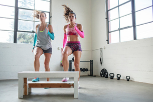 Female athletes exercising over wooden seat in gymの写真素材 [FYI03710503]