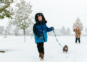 Boy with Shih Tzu walking on snow covered field while brother standing in backgroundの写真素材 [FYI03714518]