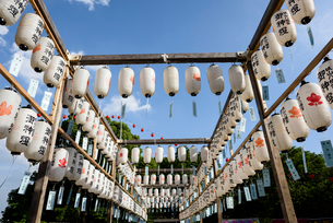 Low angle view of chochins against sky during Lantern Festivalの写真素材 [FYI03716688]