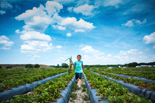 Boy holding root vegetables while running at organic farm against cloudy skyの写真素材 [FYI03716759]