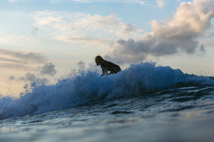 Side view of man surfboarding on waves on sea against sky during sunsetの写真素材 [FYI03719193]