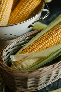Close-up of corn in containersの写真素材 [FYI03724090]