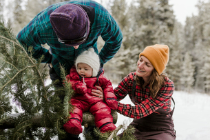 Parents looking at cute daughter sitting on pine tree in forest during winterの写真素材 [FYI03725146]