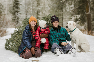Portrait of parents with daughter and dog sitting by pine tree on snow covered field in forestの写真素材 [FYI03725158]