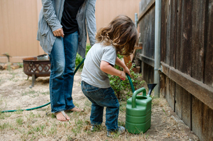 Full length of daughter using garden hose to fill watering can while standing by mother at backyardの写真素材 [FYI03731714]