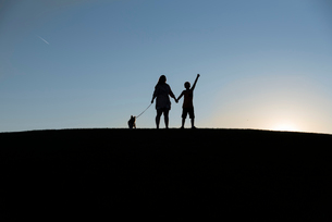 Silhouette siblings with dog standing on land against clear sky during sunsetの写真素材 [FYI03734507]