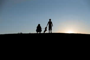 Silhouette siblings playing with dog on land against clear sky during sunsetの写真素材 [FYI03734508]