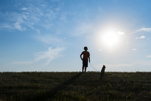 Boy with dog on grassy field against sky during sunny dayの写真素材 [FYI03734509]