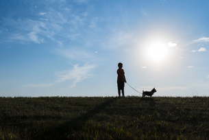 Boy with dog standing on grassy field against sky during sunny dayの写真素材 [FYI03734510]