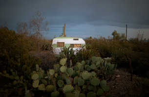 Motor home amidst plants against cloudy sky during sunsetの写真素材 [FYI03734743]