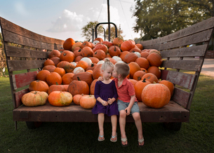 Loving brother kissing sister while sitting against heap of harvested pumpkins on cartの写真素材 [FYI03737130]