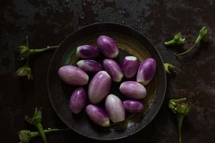 Close-up of fresh eggplants in plate on wet metallic tableの写真素材 [FYI03743050]