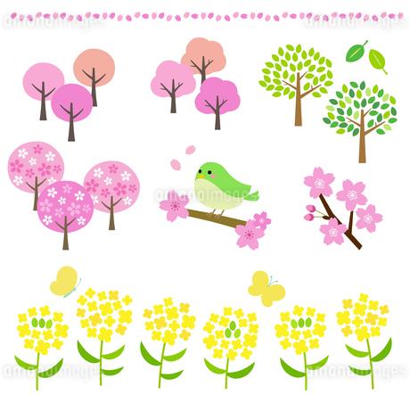 桜 春の風景イラストセットのイラスト素材 [FYI03743999]