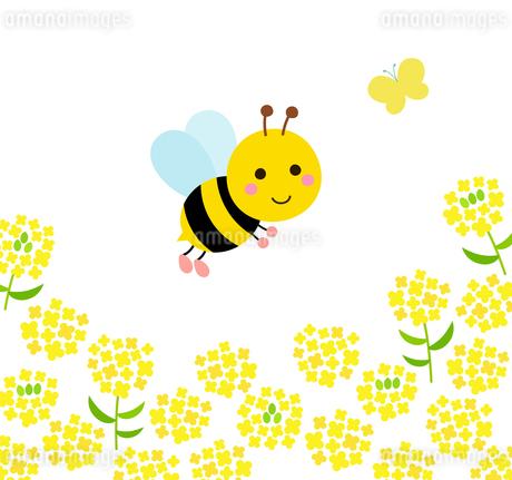 蜂と菜の花のイラスト素材 [FYI03744034]