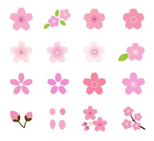 桜のイラスト アイコンセットのイラスト素材 [FYI03744041]