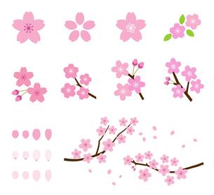 桜のイラスト アイコンセットのイラスト素材 [FYI03744056]