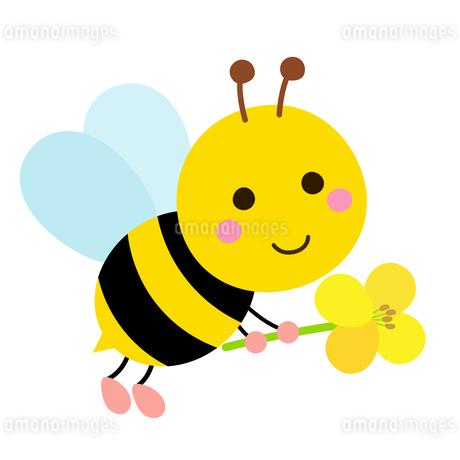 蜂と菜の花のイラストのイラスト素材 [FYI03745690]