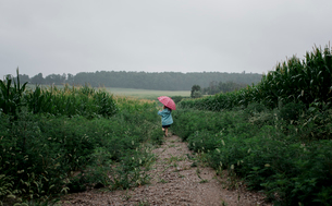 Rear view of girl carrying umbrella while walking on field against sky during rainy seasonの写真素材 [FYI03745928]